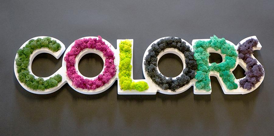 img-multicolors-1.jpg